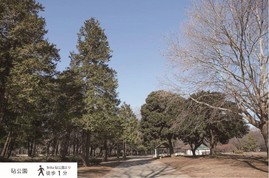 桜の名所としても有名な「砧公園」をお庭へ (徒歩1分) イメージ