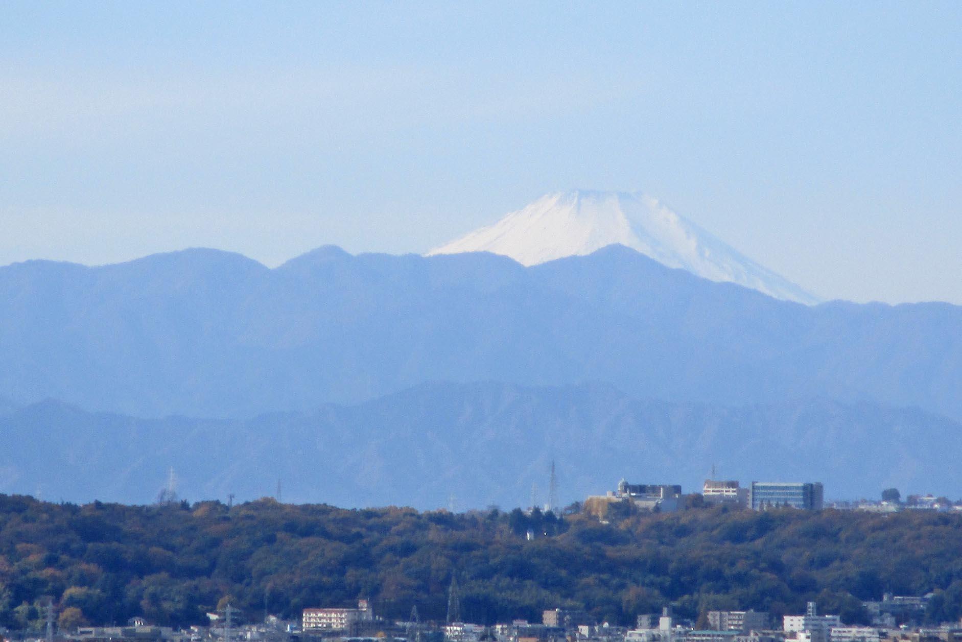 世界遺産「富士山」の眺望を楽しむ イメージ