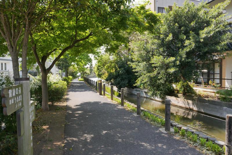 葛西親水四季の道(約290m・徒歩4分) イメージ