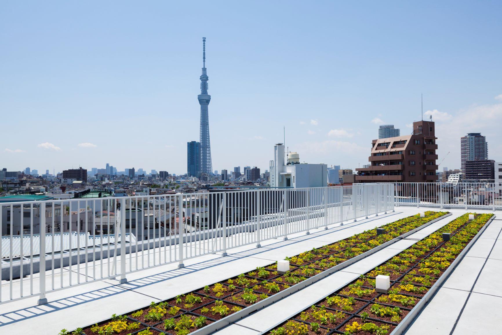 屋上緑化スカイテラスからの眺望。 イメージ